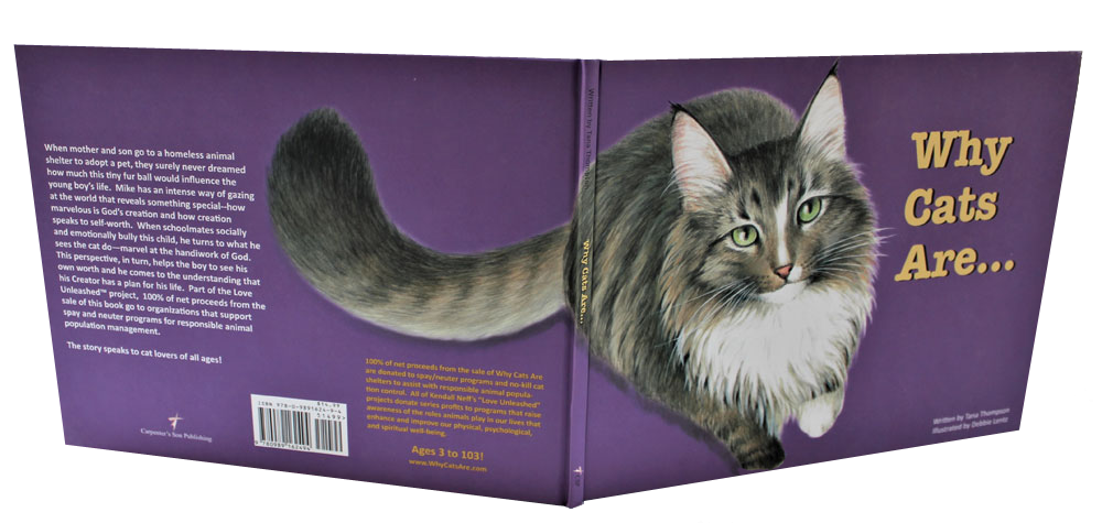 childrens picture book Why Cats Are book cover