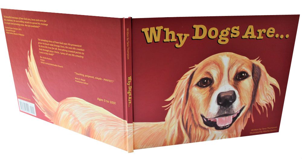 childrens picture book Why Dogs Are book cover