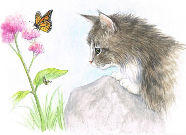 An illustration from the children's picture book Why Cats Are, from the Love Unleashed series.